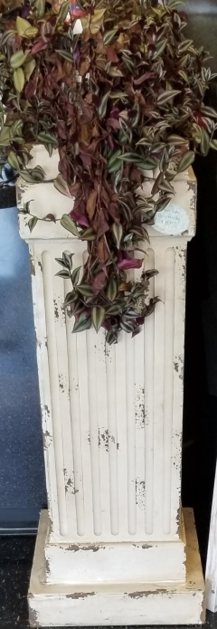 Rental store for CREAM SHABBY CHIC PEDESTAL 42  TALL 12 in Johnson City TN